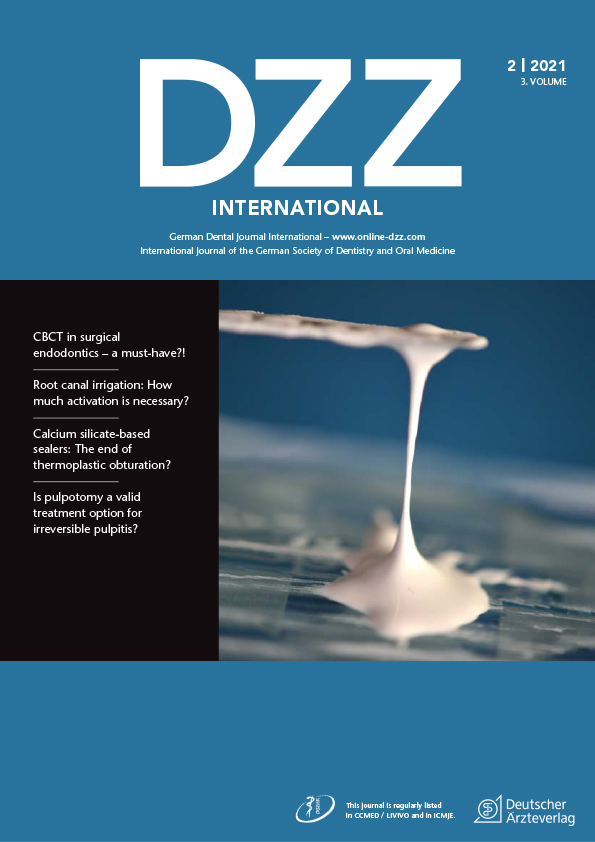 dzzint Issue 2/2021