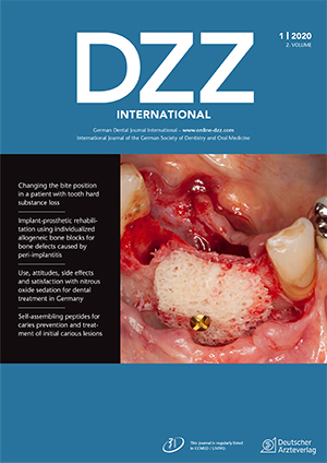 dzzint Issue 1/2020