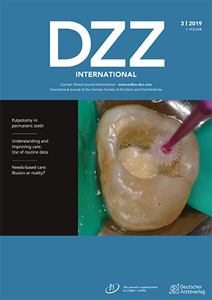 dzzint Issue 3/2019
